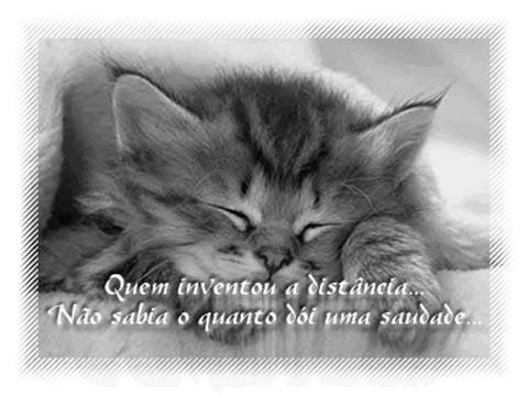 src=http://www.mensagensvirtuais.com.br/cartoes//Saudades/saudades008.jpg